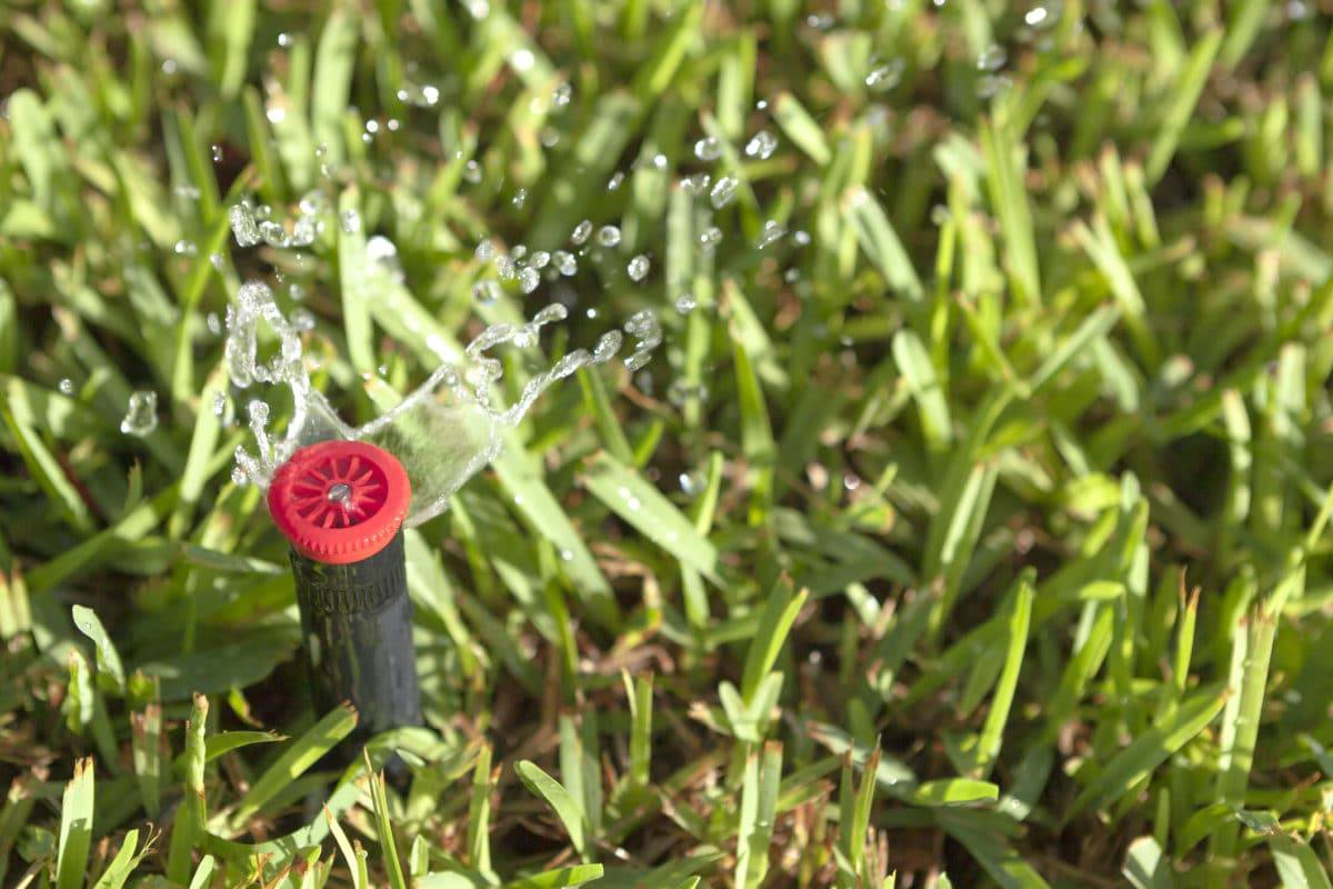 How to Maximize the Use of Your Lawn Sprinklers