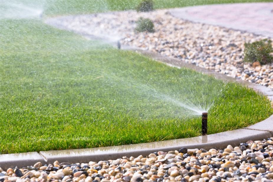 What Is the Best Irrigation System for My Florida Lawn?