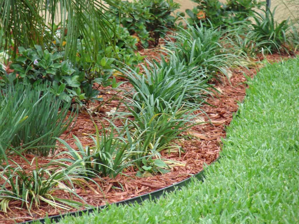 Four Ways Mulch Helps Your Landscaping