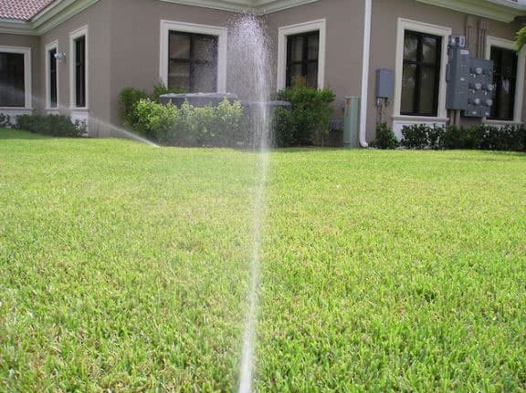 Rotor Sprinklers for large areas