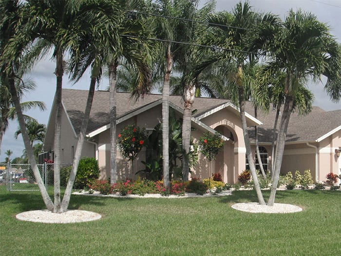Caring for Your Cape Coral Garden in February