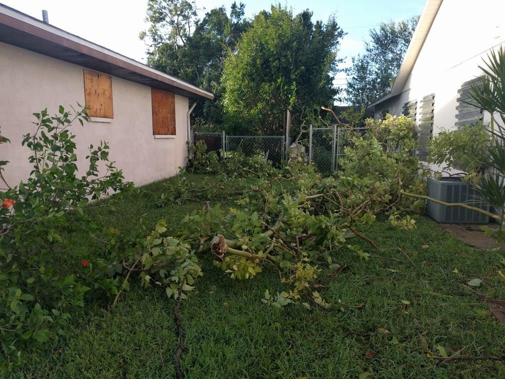 Hurricane Cleanup: We Can Help