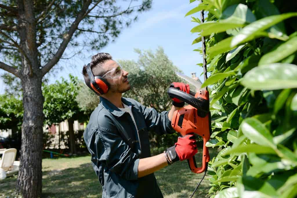 Top 3 Reasons to Hire Landscaping Services for Your Home