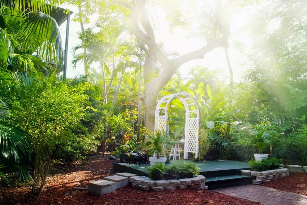 South Florida Plant Guide: How to Achieve Beautiful Low Maintenance Landscaping