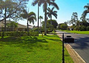 how-often-should-water-my-lawn-with-a-sprinkler-system