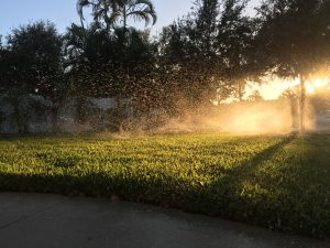 Things To Keep In Mind When Hiring A Professional Irrigation Service