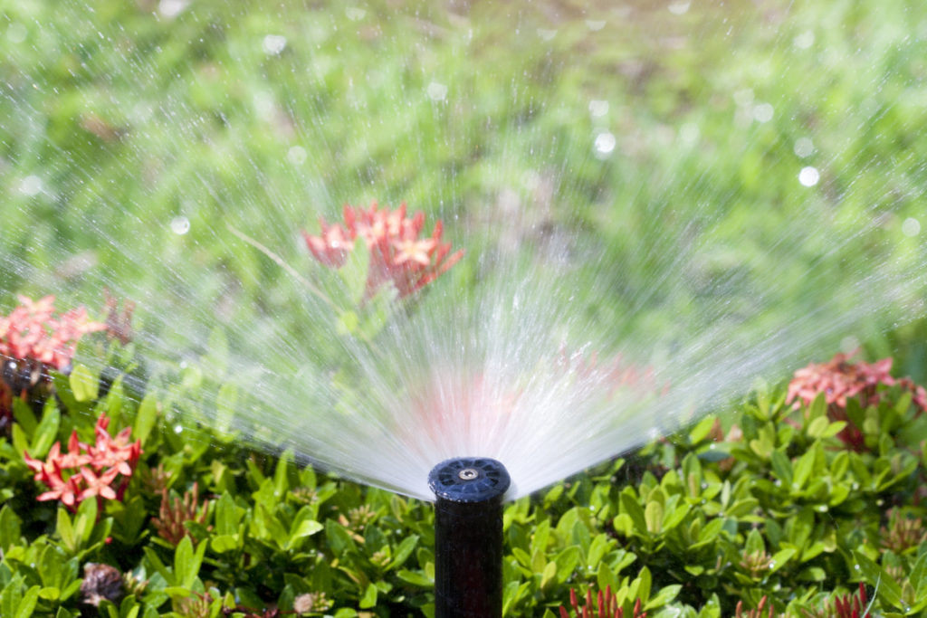 Choose The Right Sprinkler Heads For Your Southwest Florida Yard