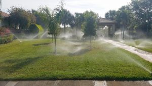 5 Warning Signs You Need Sprinkler System Repair