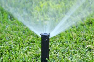Signs That Your Sprinkler System is In Trouble and Needs Some Fixing