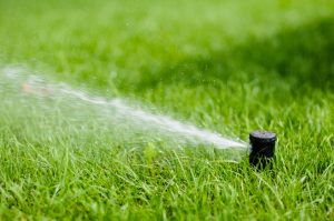 Choosing an Irrigation System for Your Florida Lawn