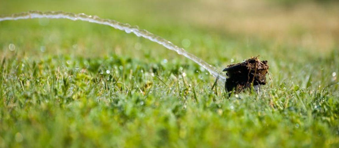5 Signs You Need Sprinkler Repair
