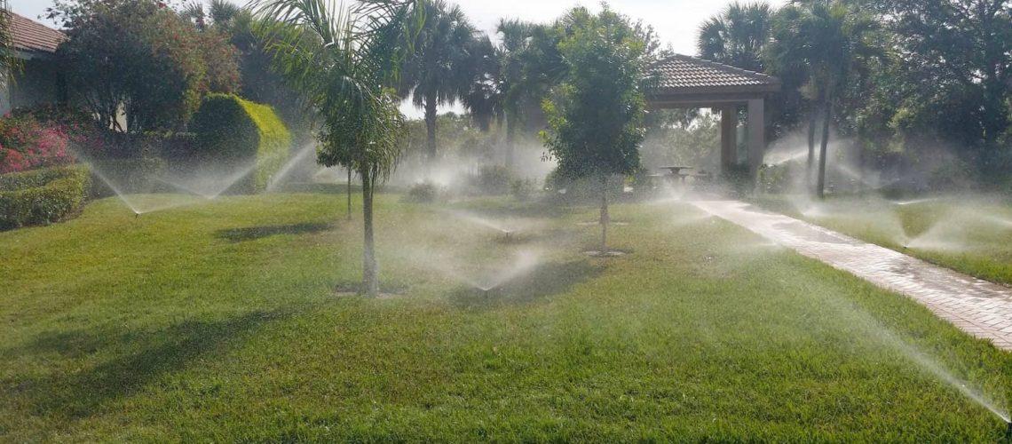 5 Warning Signs You Need Sprinkler System Repair