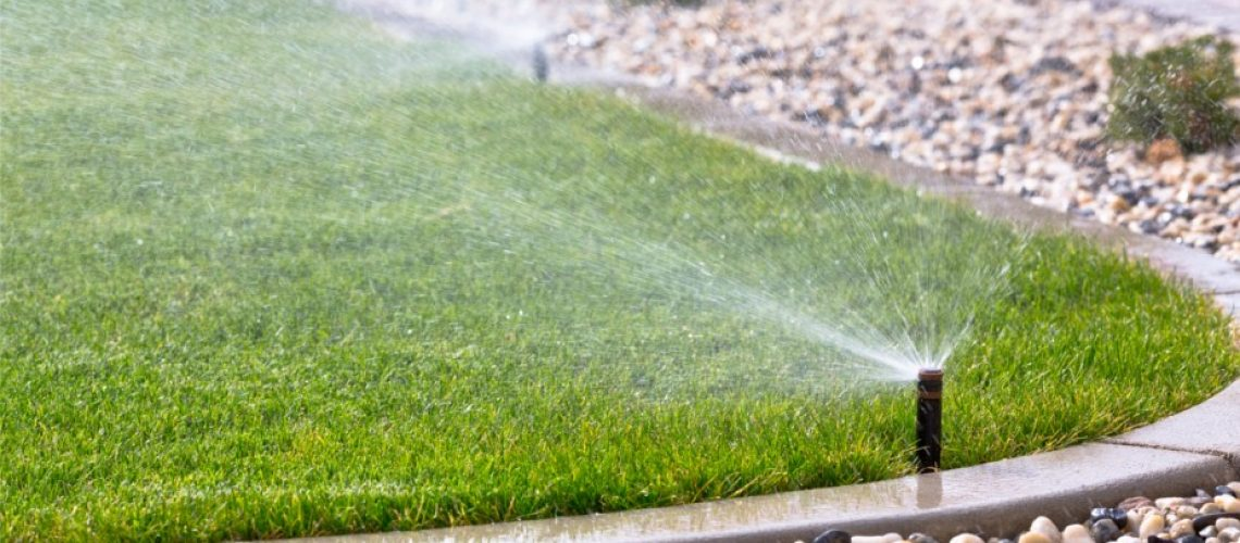 What Is The Best Irrigation System For My Florida Lawn R