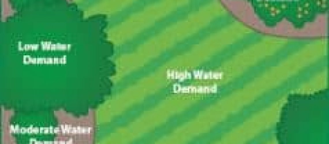 Different watering needs