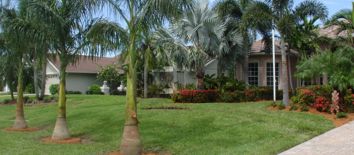 Dress Up Your Drive Way Landscaping Tips To Make Your Property More Welcoming
