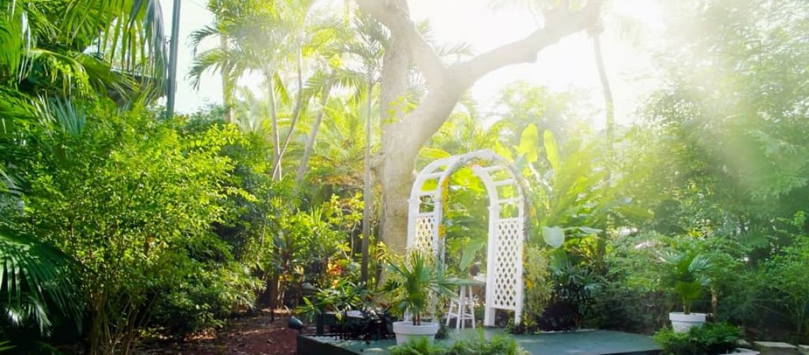 South Florida Plant Guide How To Achieve Beautiful Low