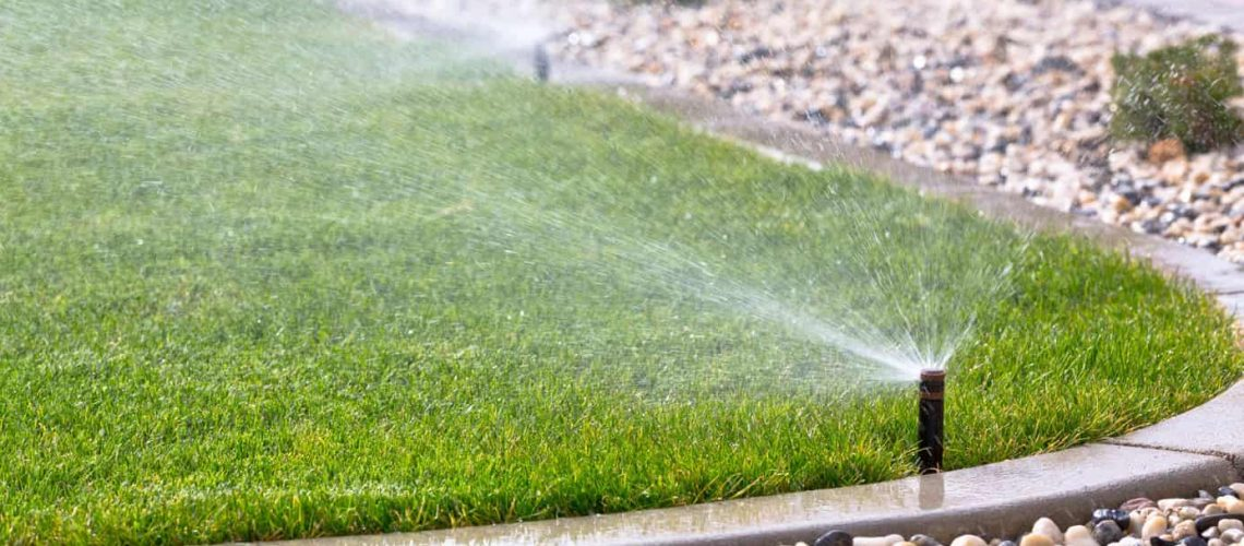 Why You Should Invest in Smart Irrigation