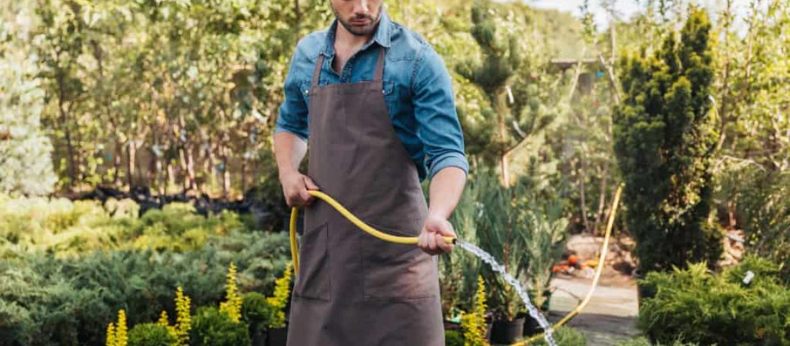 florida-lawn-care-tips-and-tricks-for-beginners