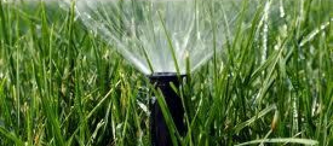 fort-myers-irrigation-landscaping