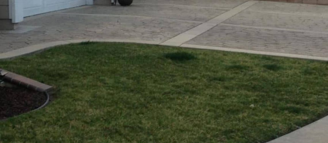 greener spots on lawn