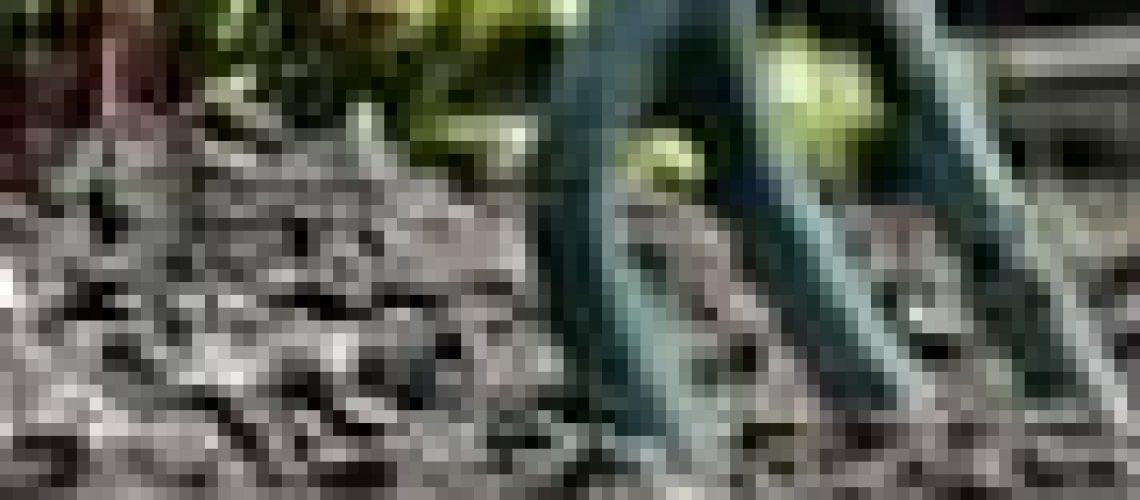 s.d.Small_garden_fork